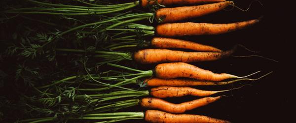 Morötter   Juiceingredienser